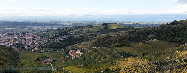 panoramic view of Valpolicella wine region with vineyards, hills and lake Garda in the background