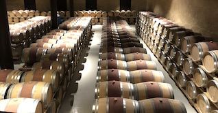 long rows of wine barrels