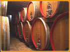 verona winery tours
