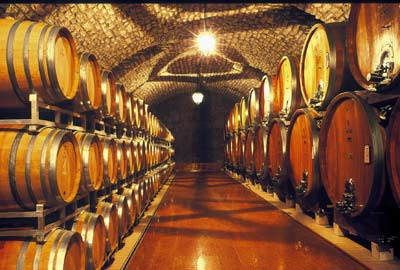 bertani againg cellar