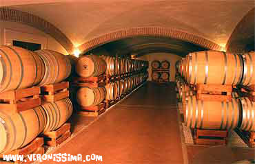 winery tours: zenato barrique cellar