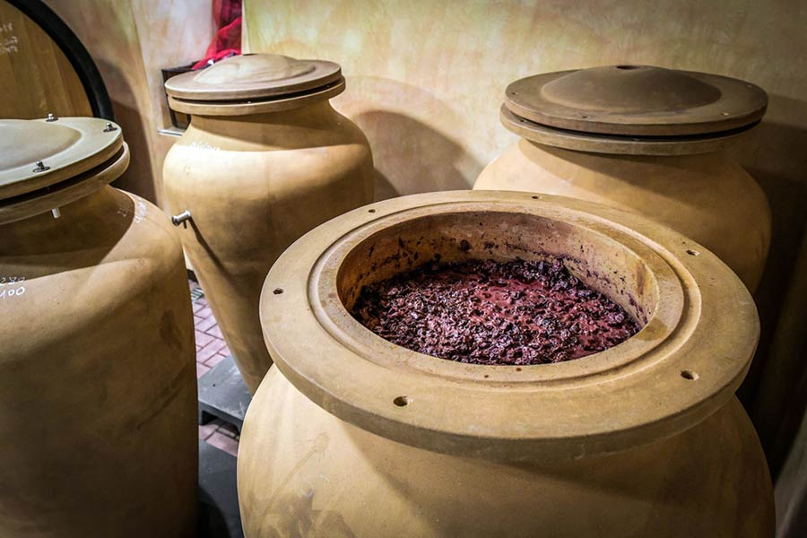 Fermentazione dell'Amarone in anfore di terracotta