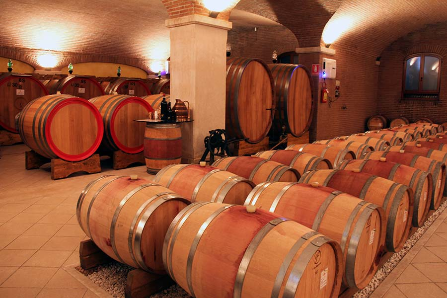 The cellar with big oak barrels and French barriques